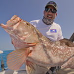 Red Grouper reef fishing