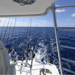 deep sea fishing Watching the Lines